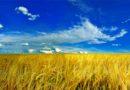 Україна: екскурсійні тури на День Незалежності.